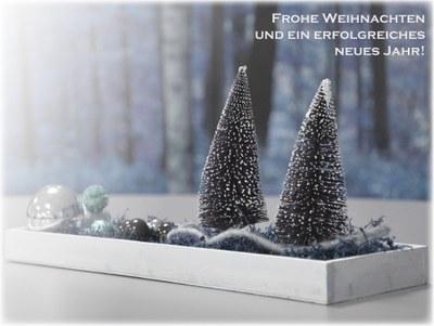Banner Weihnachten EABG.jpg